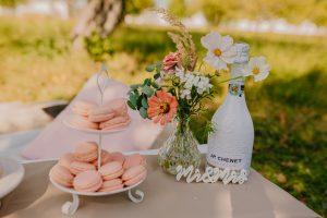 Svatba Zámek Žďár nad Sázavou