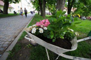 Kouzelné zahrady Zámek Žďár nad Sázavou