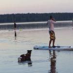 Velké Dářko paddleboarding