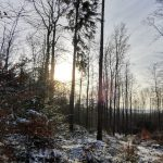 Tip na výlet do okolí Zámku Žďár - Cikháj