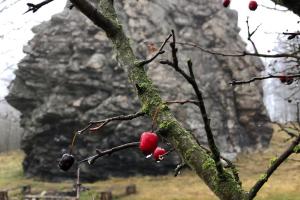 Vávrova skalka - tip na výlet do okolí Zámku Žďár